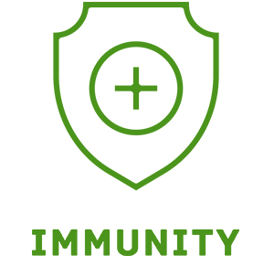 Picture of immunity IV therapy icon